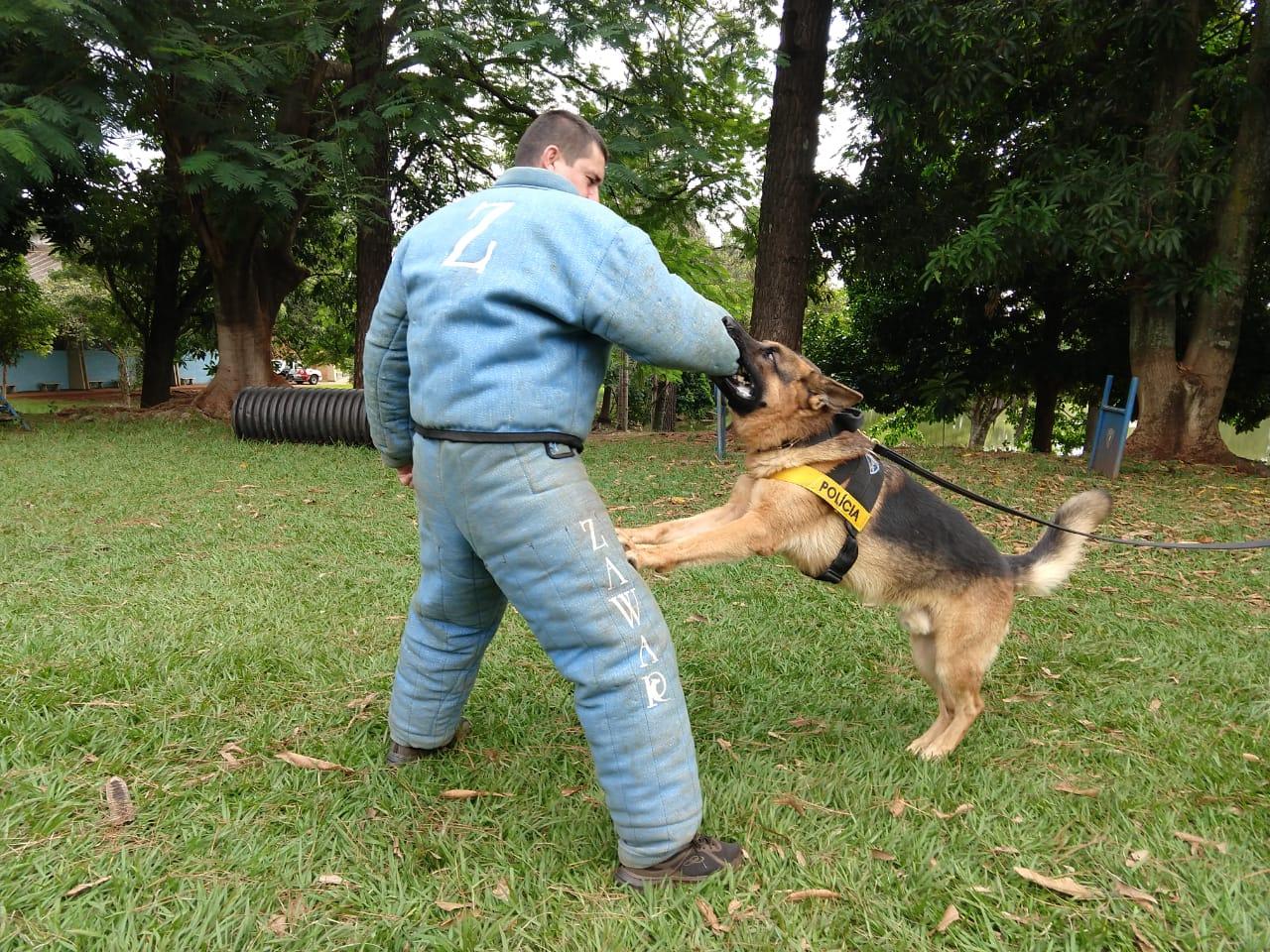 Policiais bons pra cachorro