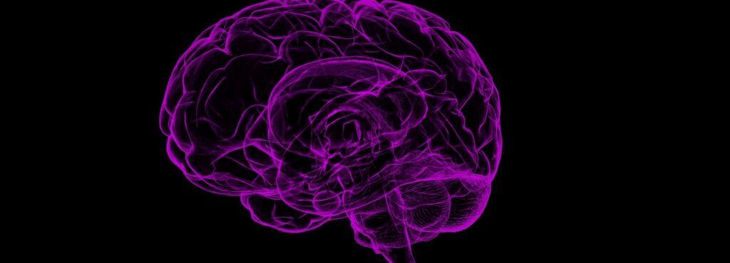 O que é esquizofrenia e transtorno bipolar?